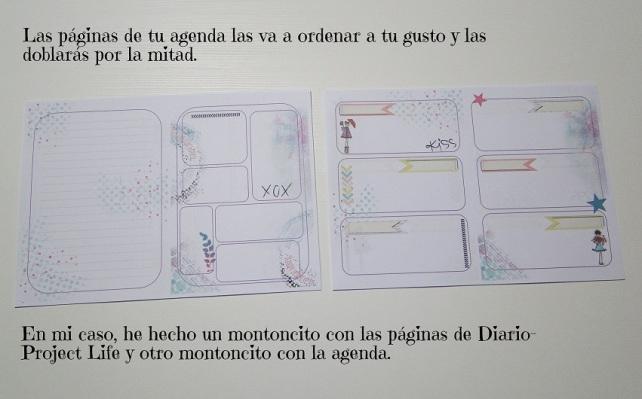 Agenda-Diario de Viaje Cinderella 6