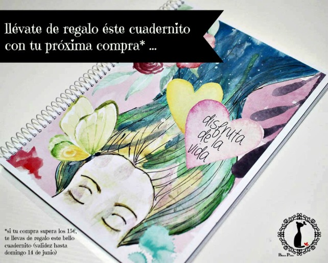 Cuaderno Cinderella UNIVERSO REGALO