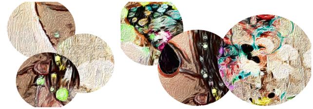 collage ampliaciones