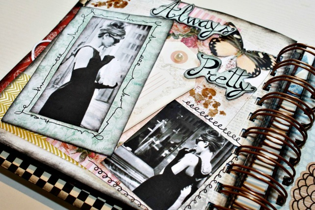 Álbum Audrey Hepbunr Patricia Lopez 11